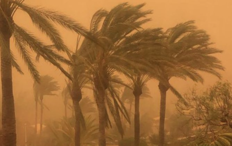 Calima hit the Canary Islands resulting in one of the worst sandstorms the citizens had ever experienced