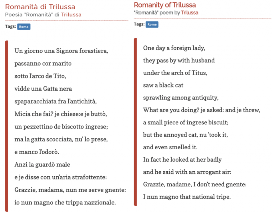Object+2%3A+A+poem+translated+from+Italian+to+English+using+google+translator+feature