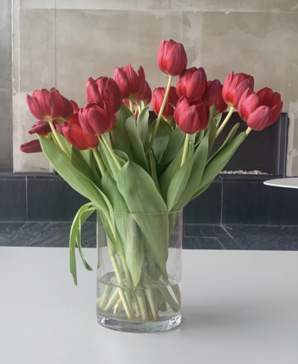 Object 1: TULIPS AS A GIFT